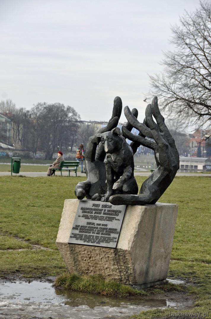 Dżok, Kraków, pomnik psa