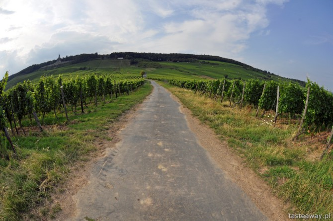 Rudesheim, Nadrenia, Dolina Środkowego Renu,