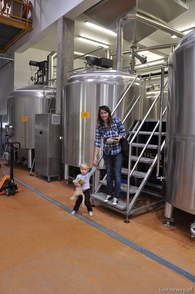 Ursa Maior, Bieszczadzka Wytwórnia Piwa, piwo regionalne, Bieszczady, Uherce Mineralne