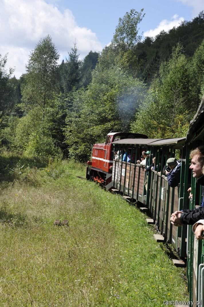 Bieszczady, Majdan, Balnica, Bieszczadzka Kolej Leśna, atrakcje dla dzieci w Bieszczadach