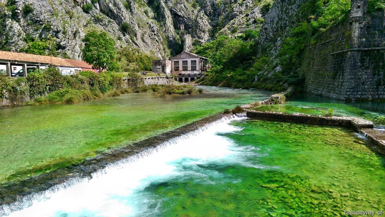 Czarnogóra, Kotor, Boka Kotorska, co zobaczyć w Czarnogórze