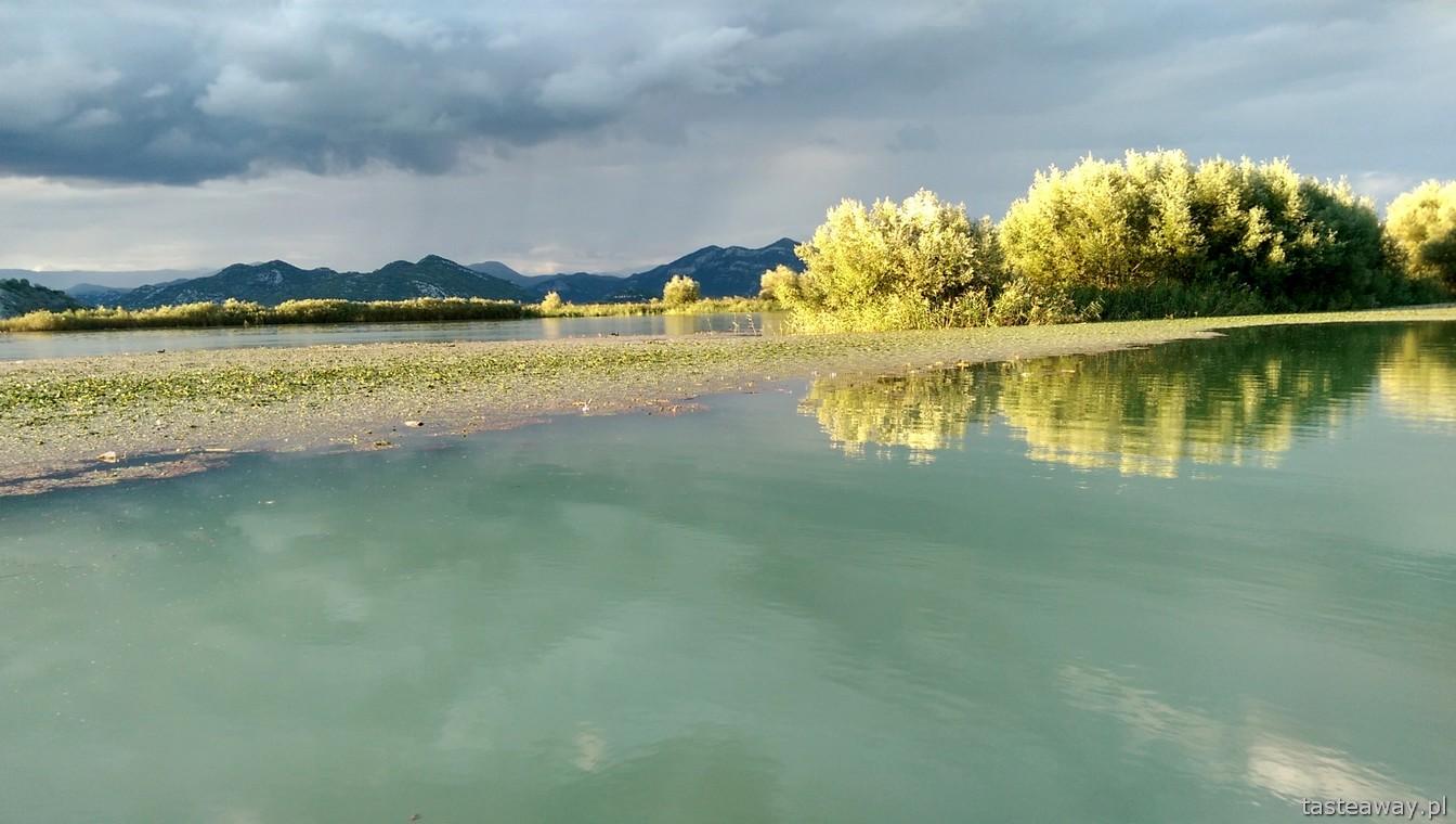 jezioro Szkoderskie, Czarnogóra, co zobaczyć w Czarnogórze