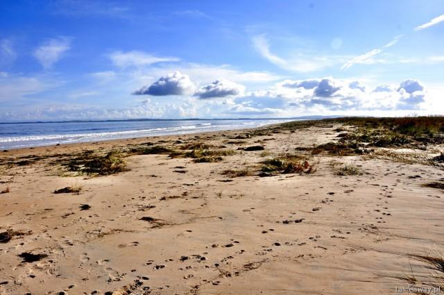 Dornoch, Szkocja, północna Szkocja, plaża