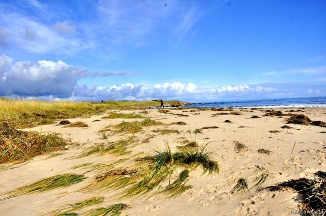Szkocja, Dornoch, Szkocja w październiku, szkockie plaże, północ Szkocji