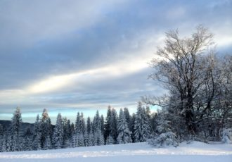 Wierchomla, Wierchomla Ski & SPA Resort, Beskid Sądecki