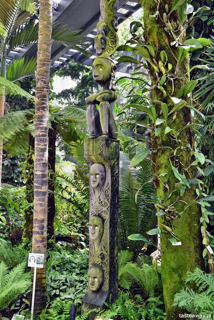 Singapur, co robić w Singapurze, Gardens By the Bay, Cloud Forest
