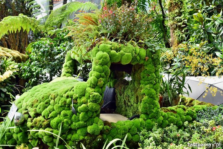 Gardens By the Bay, Singapur, najbardziej niesamowity ogród świata, Cloud Forest, Singapur z dzieckiem