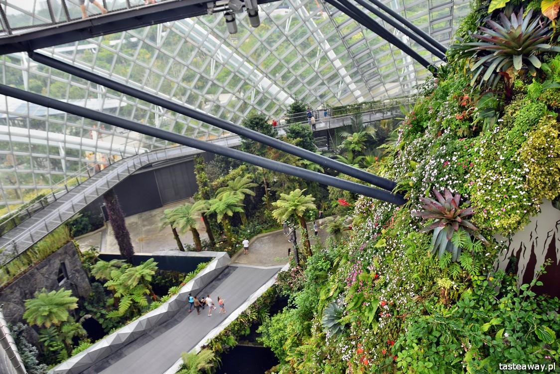 Gardens by the Bay, Singapur, co zobaczyć w Singapurze, Singapur z dzieckiem, CLoud Forest