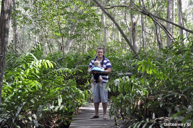 podróżowanie z niemowlakiem, jak podróżować z niemowlakiem, niemowlę w podróży