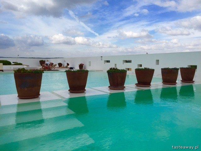 Ecorkhotel, Evora, Alentejo, Portugal, where to sleep in Alentejo, attractions in Alentejo