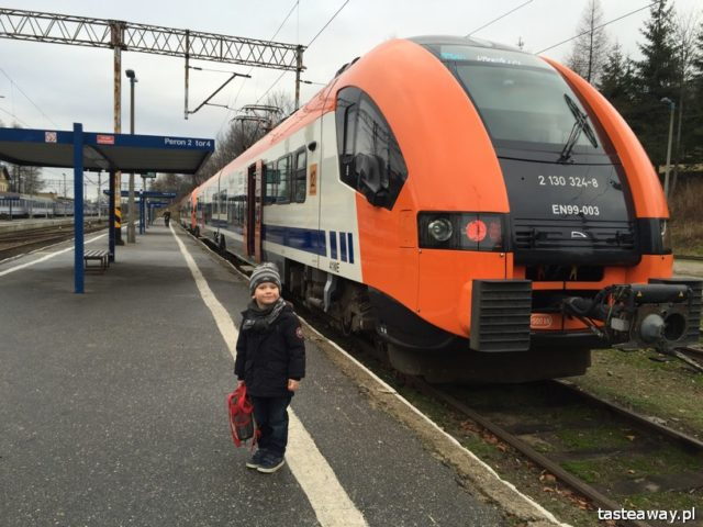 family travels, a child on a train, by train with a child, train