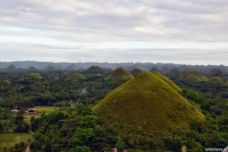 Bohol, Filipiny, Czekoladowe Wzgórza, Chocolate Hills, co zobaczyć na Bohol, Co zobaczyć na Filipinach