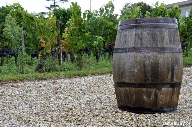 Francja, wino, francuskie wino, Bordeaux, Saint Emilion