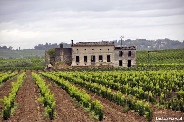 Francja, francuskie wina, Saint Emilion, winnice, chateau, PAUL