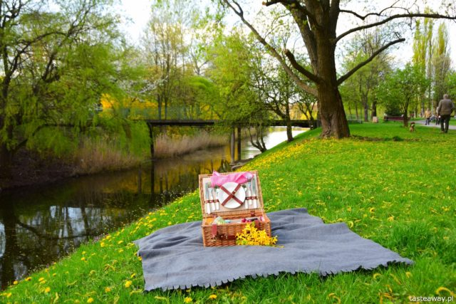 piknik, piknik we dwoje, kosz piknikowy, francuskie sery, sery Le Rustique, pomysł na randkę, pomysł na lunch