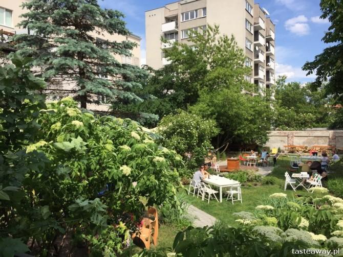 DZiK, Mokotów, miejsca przyjazne dzieciom, rodzinny obiad, obiad z dziećmi, niedziela w mieście, grill