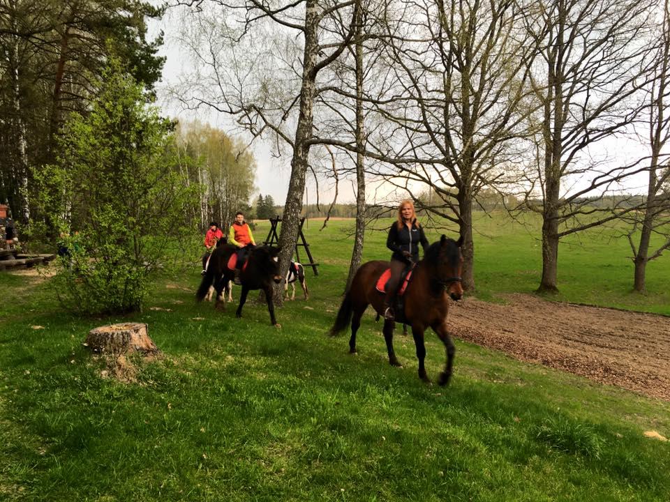 Łotwa, co robić na Łotwie, co zobaczyć na Łotwie, Klajumi, Kraslava, konie