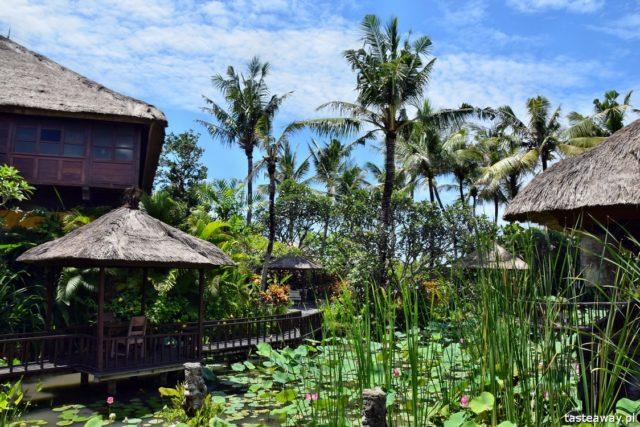 Azja, Azja Południowo-Wschodnia, czy warto jechać do Azji, Tajlandia, Kambodża, Birma, Wietnam, egzotyczne podróże, kierunki na zimę, Bali
