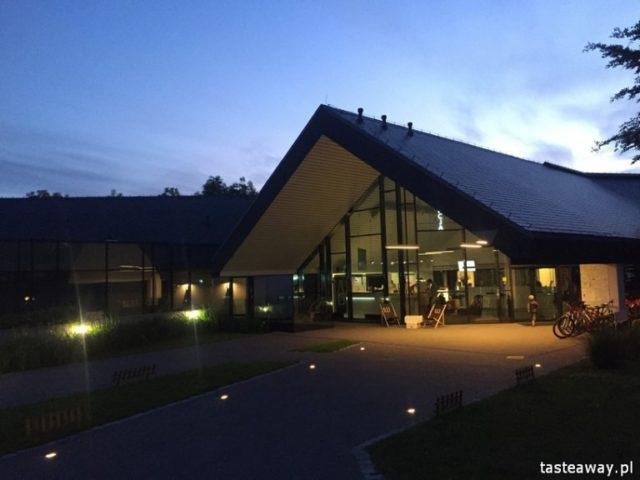 magiczne miejsca w Polsce, magiczne miejsca na jesień i zimę, Poziom 511, Ogrodzieniec, Jura Krakowsko - Częstochowska