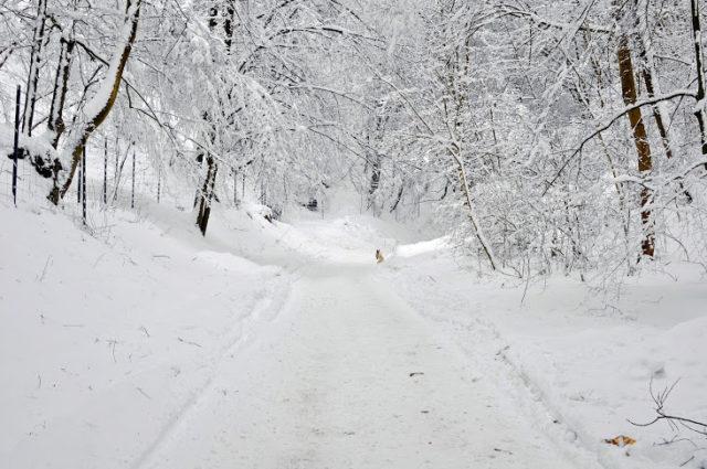 magiczne miejsca w Polsce, magiczne miejsca na jesień i zimę, gdzie wyjechać jesienią i zimą, Kazimierz Dolny, Pensjonat Vincent, Kazimierz Dolny zimą