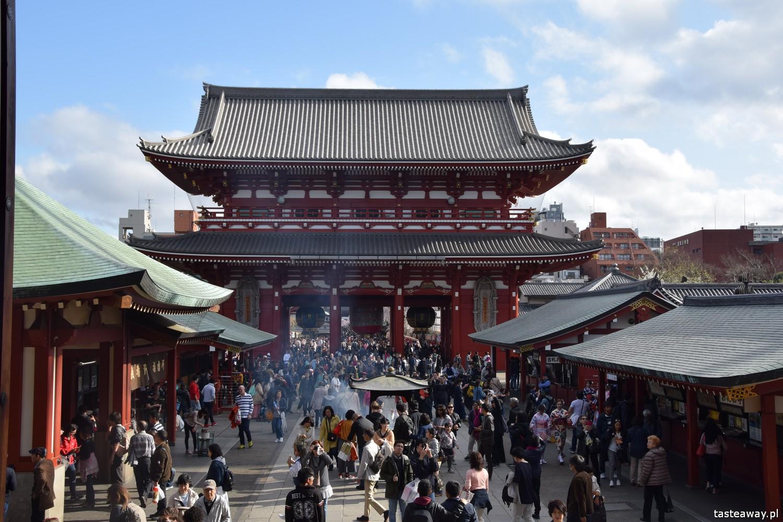 Tokio, Japonia, Senso-Ji, co zobaczyć w Tokio, hanami, miasta świata