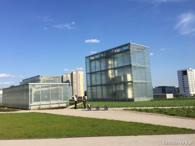Katowice, weeekend w Katowicach, Muzeum Śląskie, Festiwal Nowa Muzyka, Tauron Nowa Muzyka, co robić w Katowicach