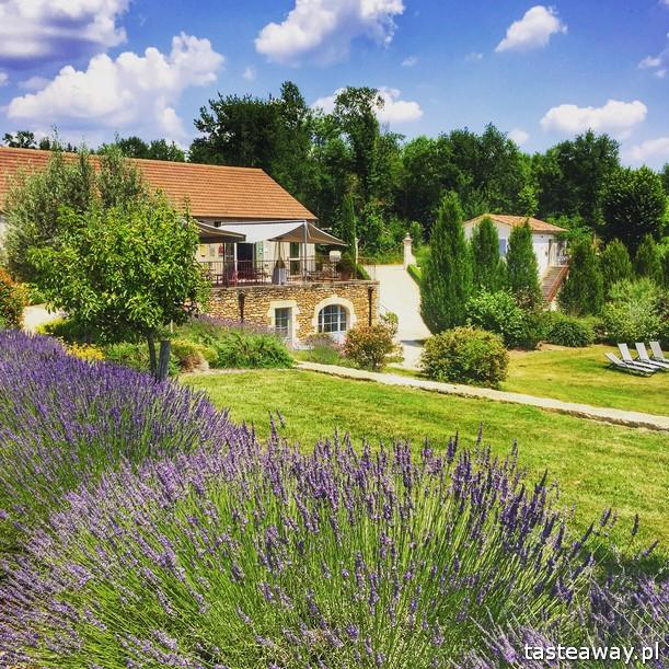 Francja, co zobaczyć we Francji, najpiękniejsze francuskie miasteczka, Oksytania, Saint Cirq Lapopie, Occitanie, bajkowa Francja, hotel Le Saint Cirq