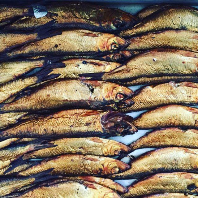 ryby, Szwecja, co robić w Szwecji, co jeść w Szwecji, Bonan, śledzie wędzone dymem świerkowym