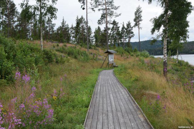 Szwecja, co robić w Szwecji, Mavikens kemping, urlop w Szwecji