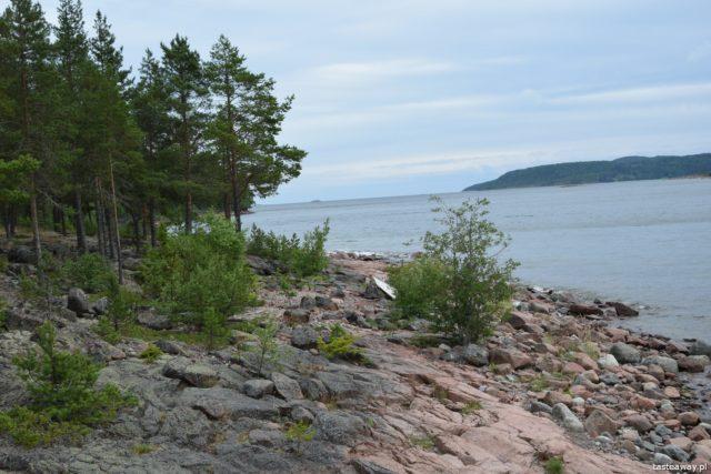 Szwecja, Mavikens Camping, natura, co robić w Szwecji, urlop w Szwecji, wakacje w Szwecji, fiord