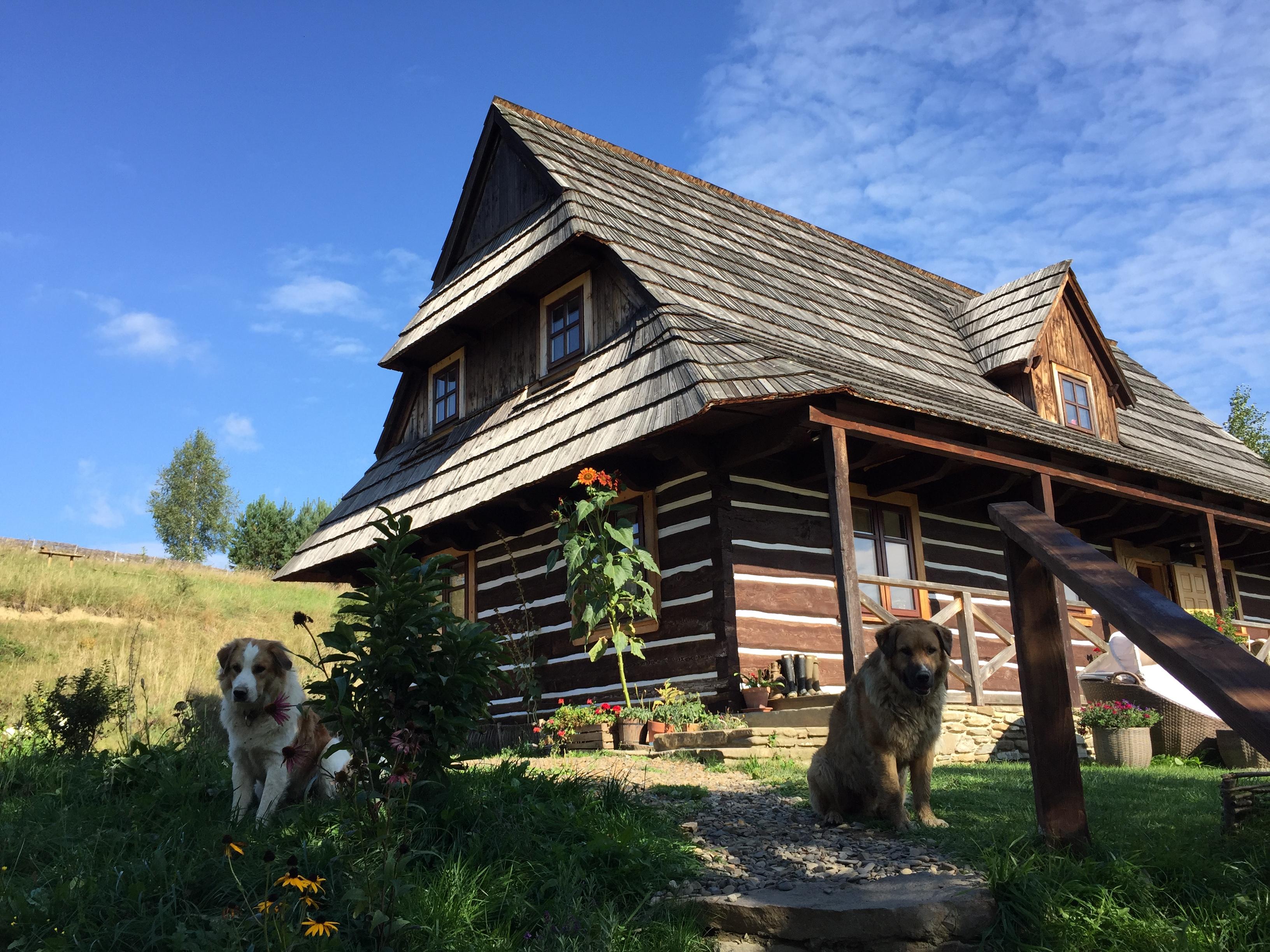 Magiczne Bieszczady, Bieszczady, co zobaczyć w Bieszczadach, gdzie mieszkać w Bieszczadach, magiczne miejsca w Bieszczadach, Wataha, Maciejewka