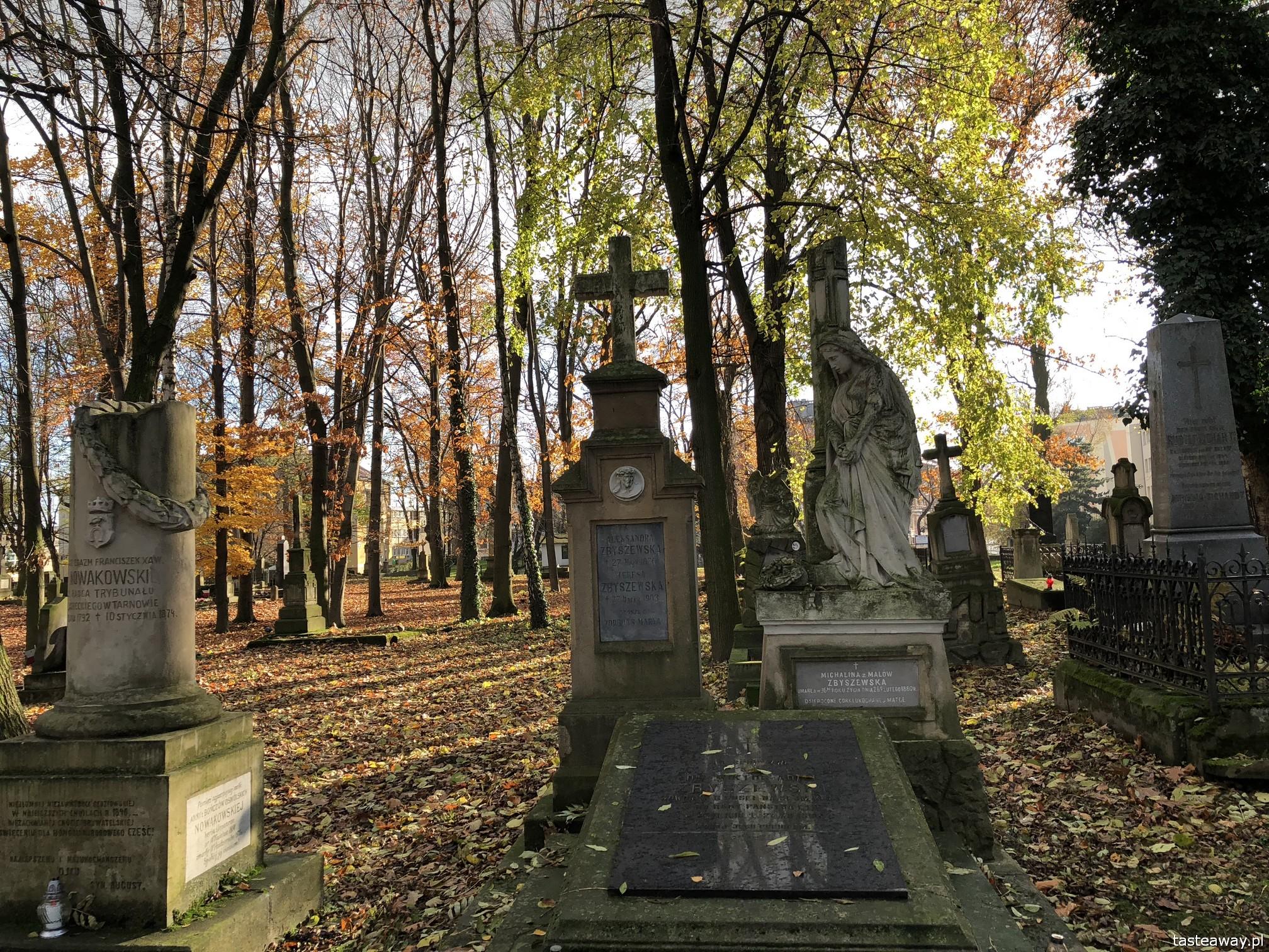 Rzeszów, co zobaczyć w Rzeszowie, Podkarpackie, rynek w Rzeszowie, podróżowanie z dziećmi, Stary Cmentarz