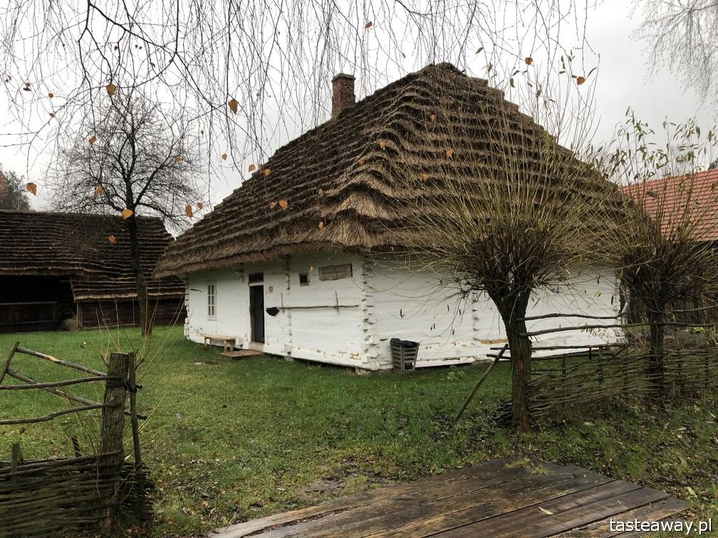 Podkarpackie, co zobaczyć, Muzeum Kultury Ludowej, Skansen, Kolbuszowa,
