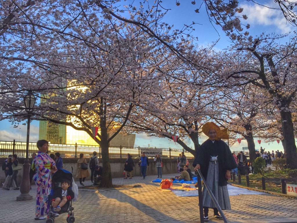 podsumowanie roku, podsumowanie Tasteaway, Japonia, kwitnące wiśnie, święto kwitnących wiśni