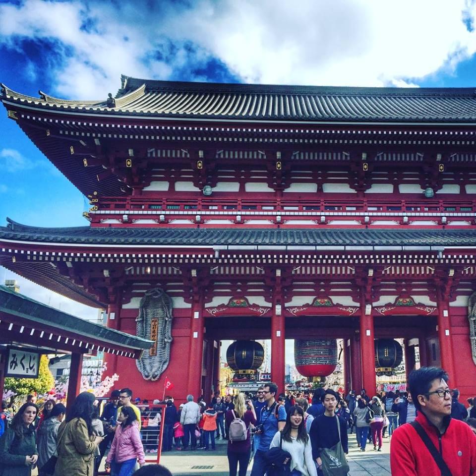 podsumowanie roku, podsumowanie Tasteaway, Japonia, kwitnące wiśnie, święto kwitnących wiśni, Senso-Ji, Tokio