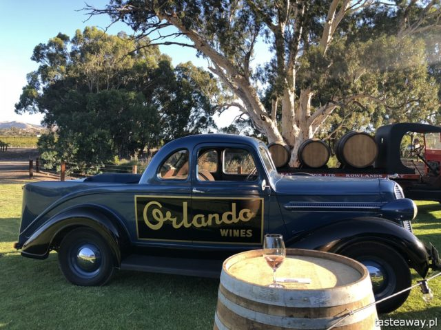 Australia, co zobaczyć w Australii, australijskie wino, Barossa Valley, wina Jacob's Creek, wino, czerwone wino, Shiraz