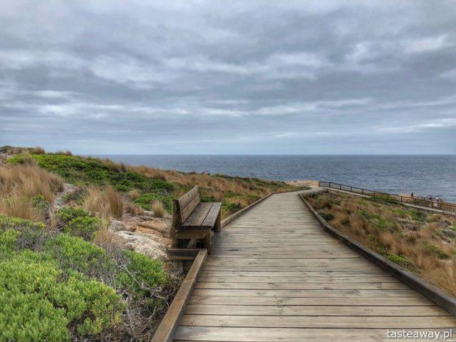 Australia, co zobaczyć w Australii, Kangaroo Island, krajobrazy Australii