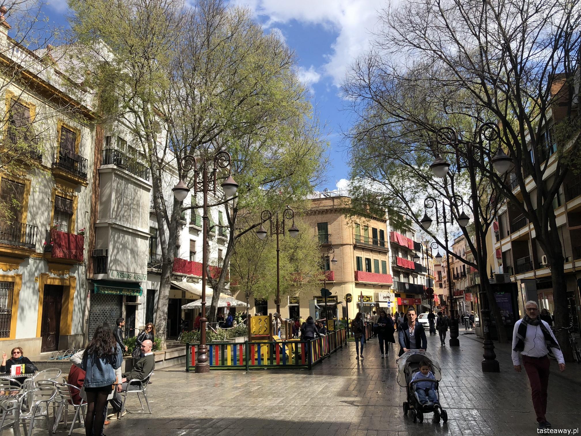 Sewilla, Sevilla, co zobaczyć w Sewilli, Sevilla w jeden dzień, Andaluzja, miasta Hiszpanii, spacer po Sevilli, Katedra Najświętszej Marii Panny w Sewilli