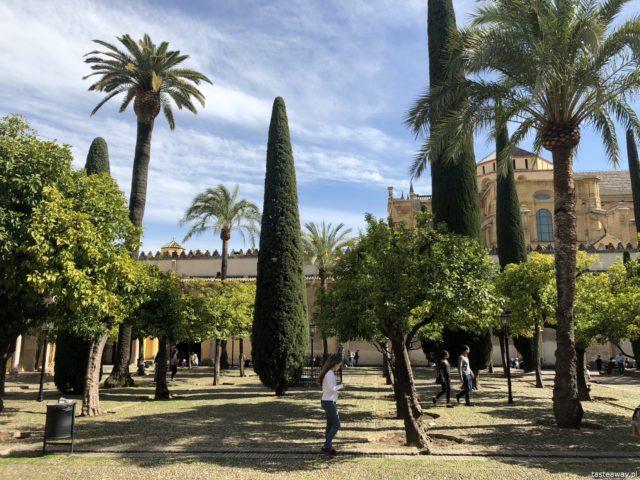Kordoba, co zobaczyć w Kordobie, Cordoba, Andaluzja, co zobaczyć w Andaluzji, Andaluzja, La Mezquita, Patio de los Naranjos