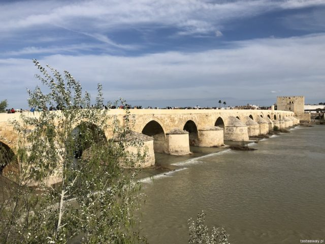 Kordoba, co zobaczyć w Kordobie, Cordoba, Andaluzja, co zobaczyć w Andaluzji, Andaluzja, La Mezquita, Triunfo de San Rafael de la Puerta del Puente, Puente Romano