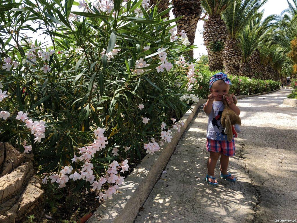 Lesbos, co zobaczyć na Lesbos, Lesbos czy warto, Grecja, wakacje w Grecji, którą grecką wyspę wybrać, Molyvos