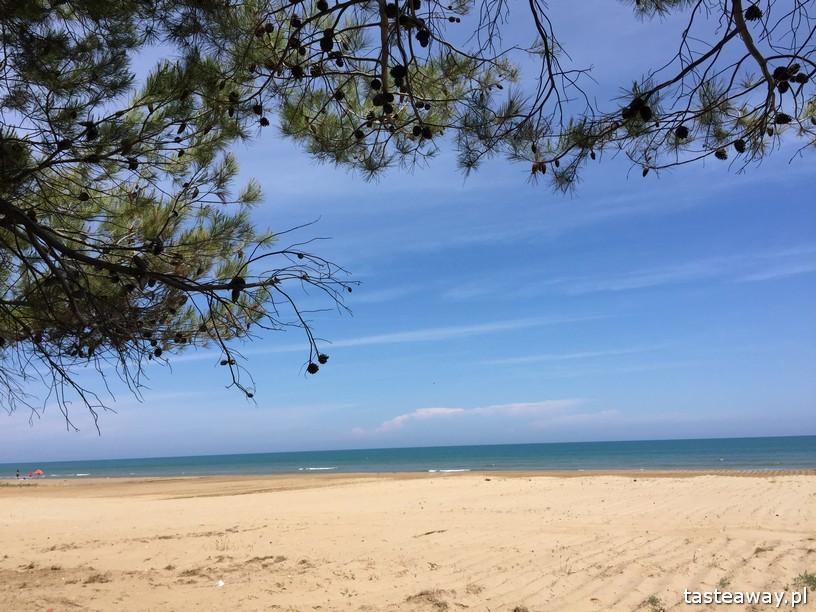plaża Vieste