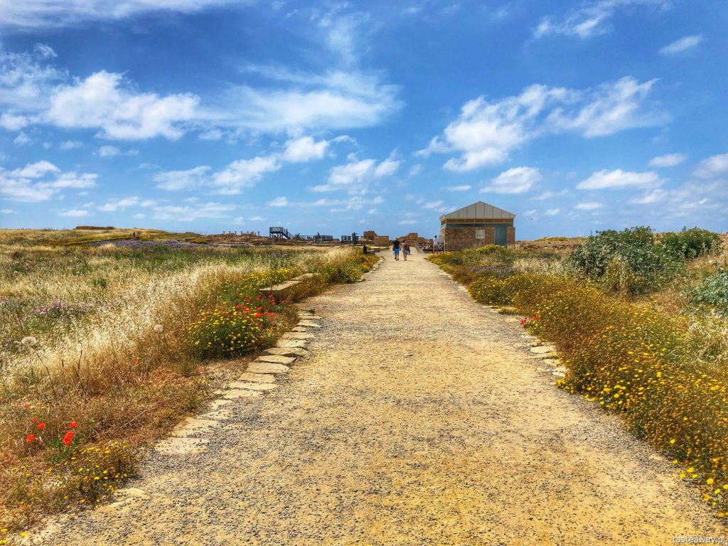 Pafos park archeologiczny_Cypr