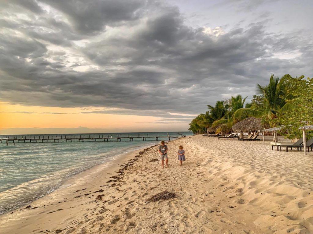 luty Dominikana