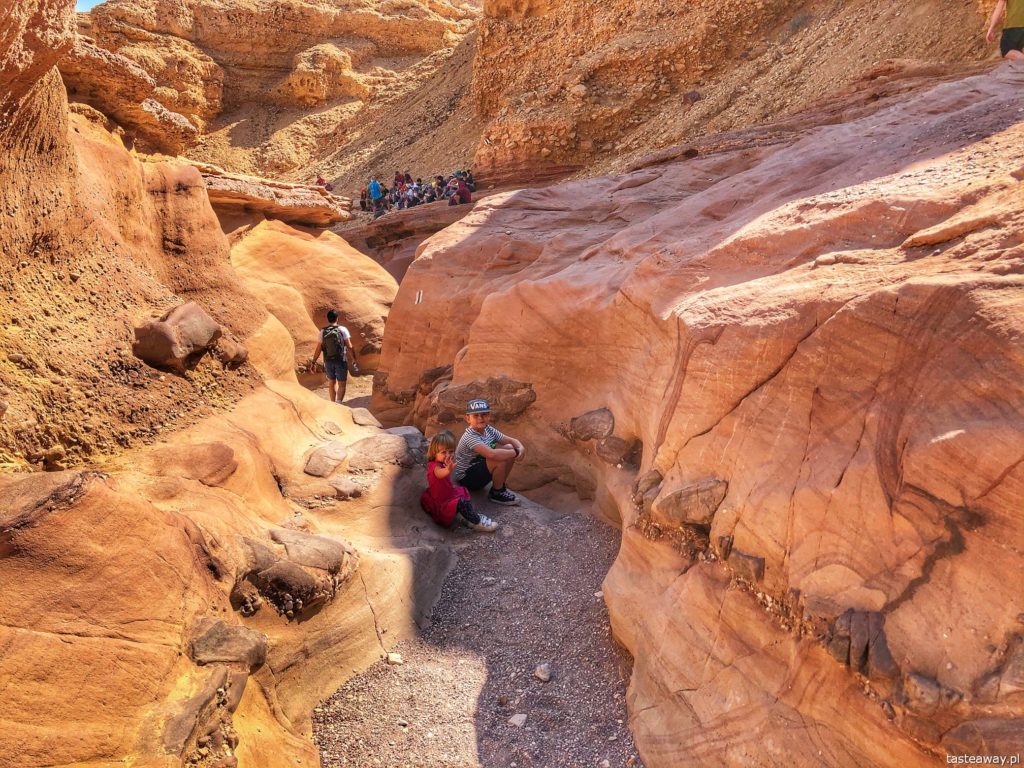 Red Canyon_6