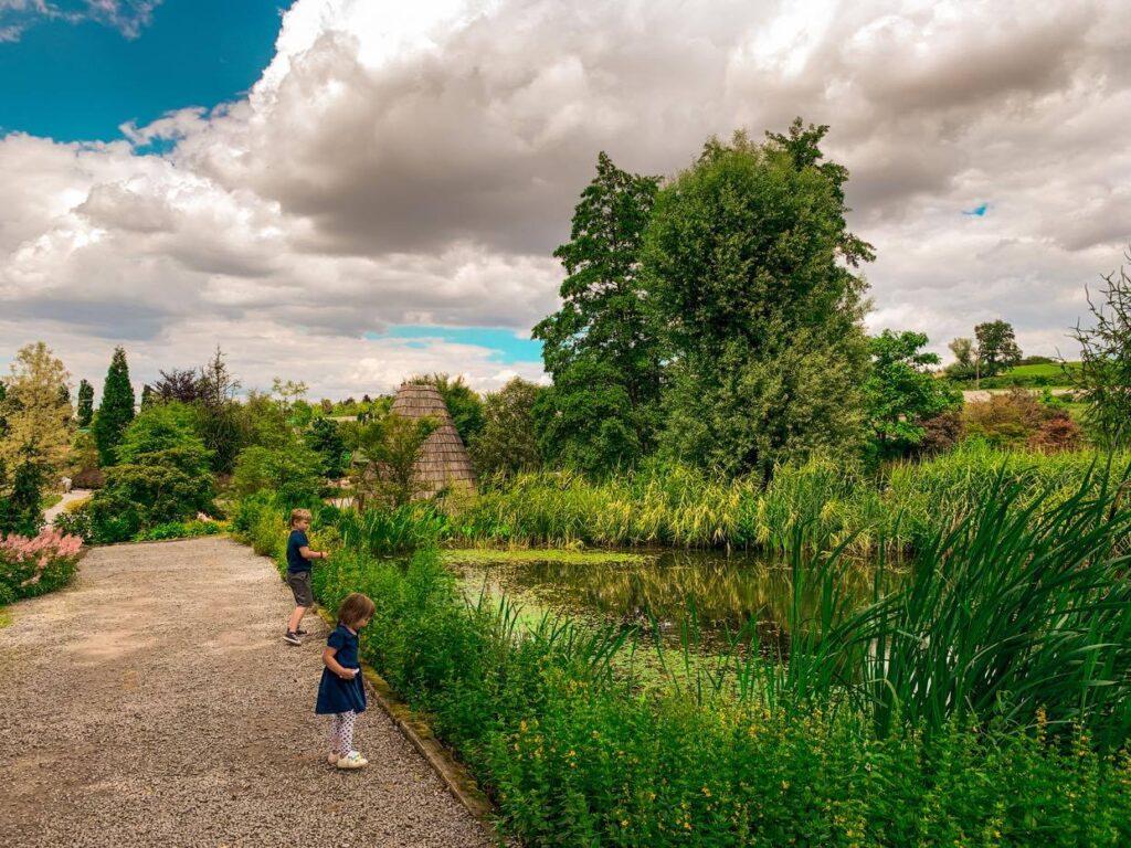 Arboretum Wojsławice_3