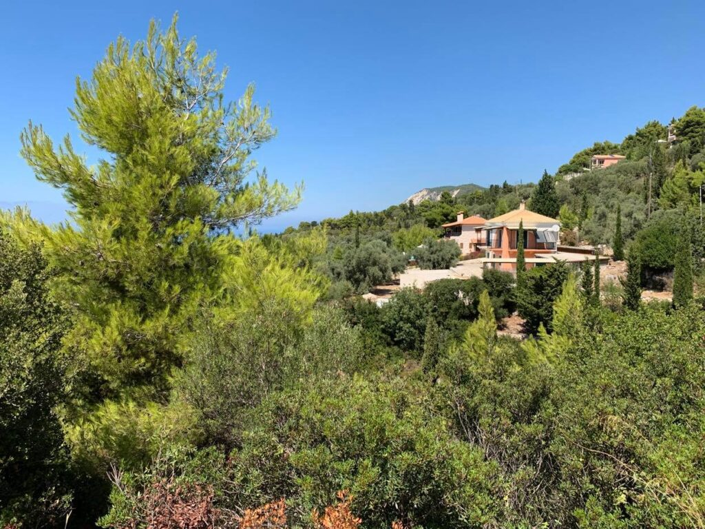 Villa Agapi i otoczenie willi