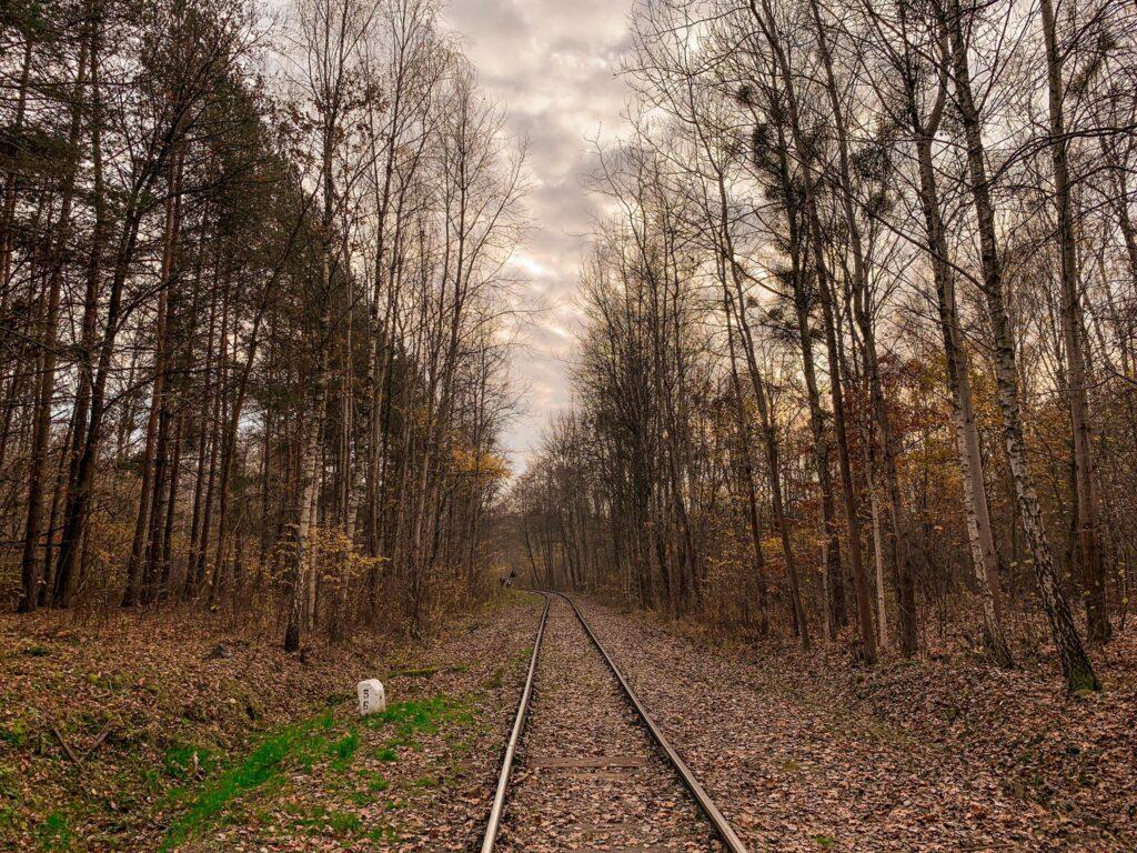 trasa na Łosiowe Błota