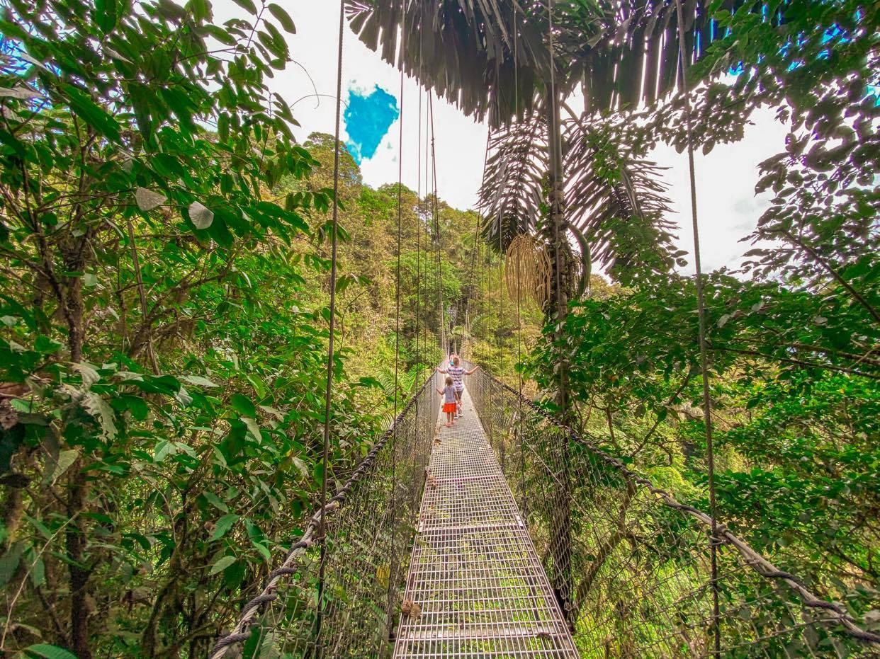 Hanging Bridges_5