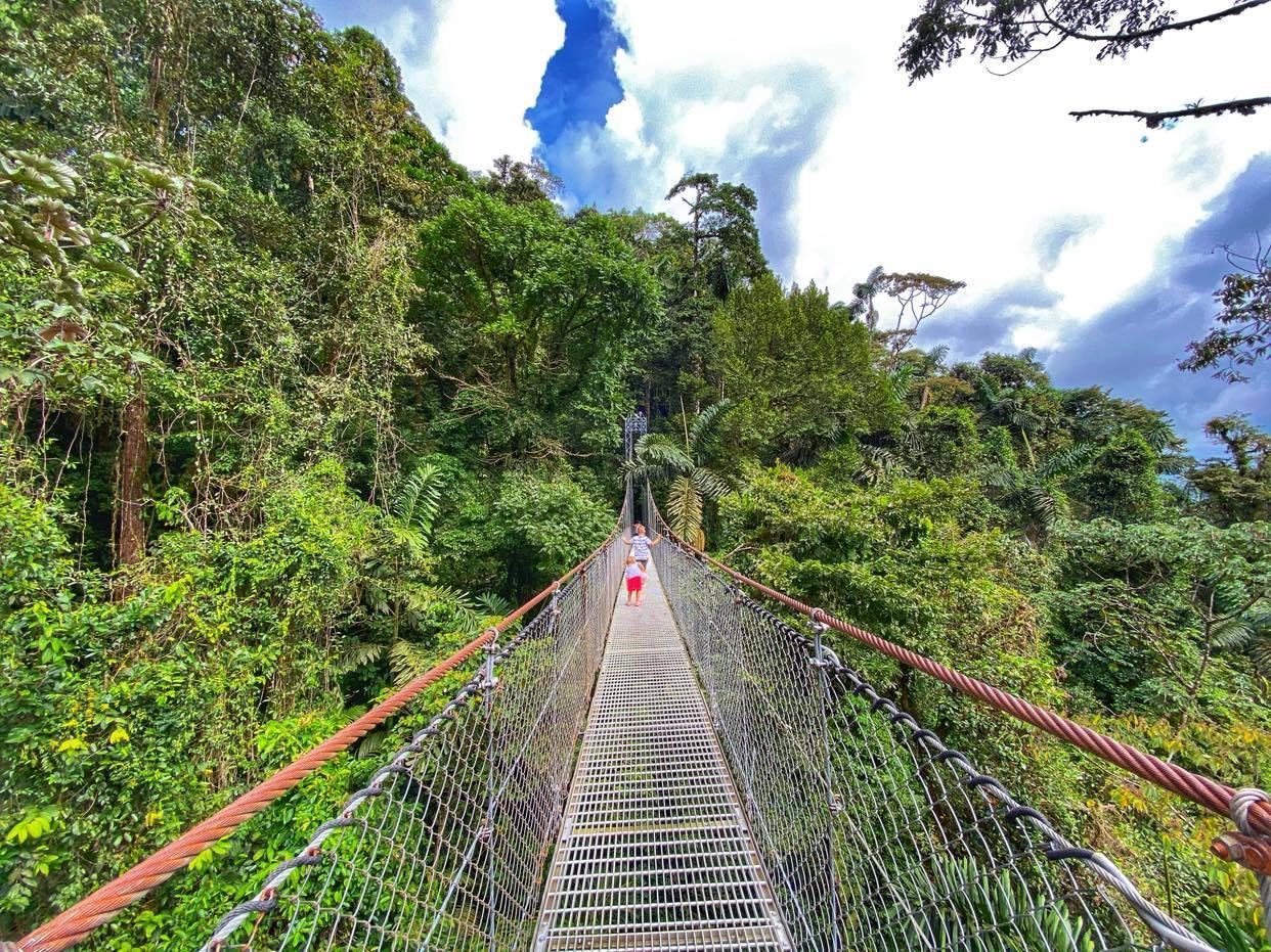 Hanging Bridges_Arenal